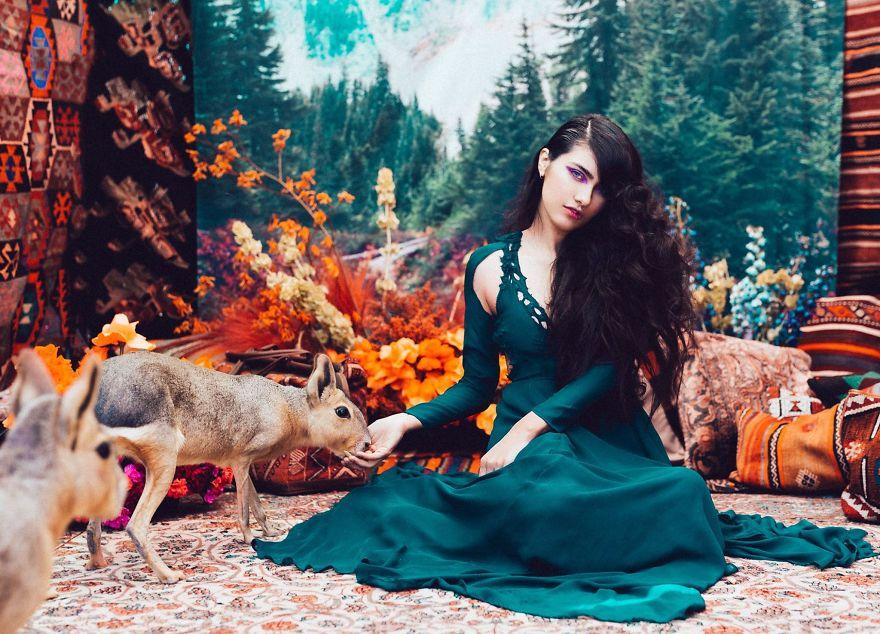 animals-saved-black-market-where-the-wild-things-are-natasha-wilson-5-5995407241b10__880