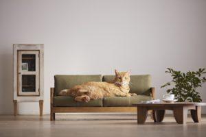 japan-miniature-furniture-cats-okawa-city-designboom-1
